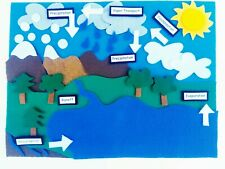 Water Cycle Felt Set*Homeschool Science/Classroom/Montess ori Science*