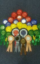 COMPLETE SHOW IN A BOX - 28 X SINGLE TEIR ROSETTES & BEST IN SHOW & RESERVE BIS