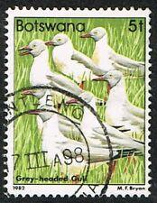 Botswana 1982. Nature. Birds. Grey-headed Gull. 5t. Used.