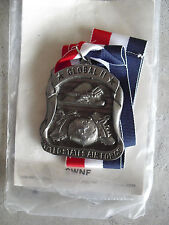 Vintage 1980s Pewter Global II United States Air Force Ribbon and Medal LOOK
