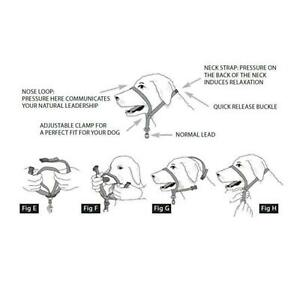 Beaphar Gentle Leader Head Collar Harness SMALL MEDIUM LARGE Stops Pulling Dog