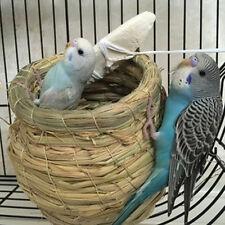 Natural Straw Woven Handmade Parrot Pigeon Swallow Small Bird Nest House New
