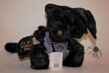 Boyds Bears Zelda Witchypuss, Halloween plush # 919790 black cat with witch hat
