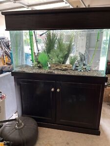 REEF CAPABLE 100 GALLON TANK, CANOPY, STAND, LIGHTS, AND EHIEM CANISTER FILTER