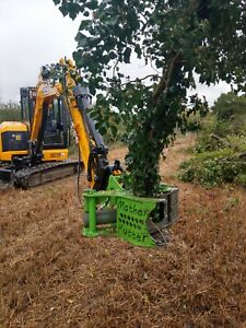 RSL Mother Kutter 300 tree shear for excavator digger 2.9T - 9T machines inc VAT