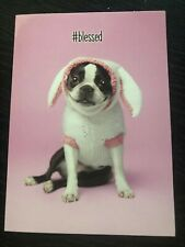 lot of 5 greeting cards avanti Easter