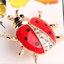 Ladybug Brooch For Jewelry Beautiful Fashionable Animal Brooches Rhinestone