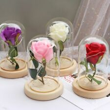 Romantic Eternal Flower Glass Cover LED Lamp Beautiful Valentine And Mama's Gift