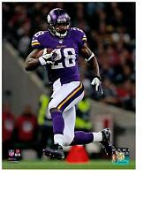 2bbb00aea Adrian Peterson Authentic Action 8x10 Color Photo Minnesota Vikings NFL  Hologram
