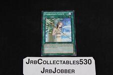 YUGIOH! Forbidden Lance BP02-EN162 1st Mosiac x1