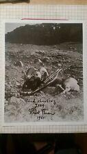 "Fred Bear Archery Recurve Trophy Photo Stone Sheep 8"" X 10"" Original Signed"
