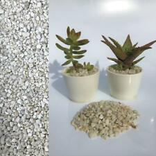 2-5mm White Quartz Stone Dressing Gravel for Cactus Succulent Bonsai Pot Topper