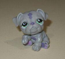 ❤Littlest Pet Shop #916 Grey Purple Bulldog with Green Eyes LPS