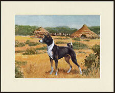 BASENJI IN AFRICAN SCENE LOVELY DOG PRINT MOUNTED READY TO FRAME