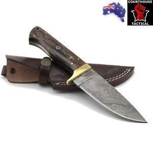 Handmade Hunting Knife, Damascus Blade, Tinted Camel Bone & Brass Handle, Sheath