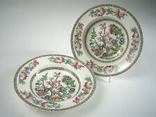 2 JOHNSON BROS 'INDIAN TREE' Hand Painted RIMMED SOUP BOWLS Vintage