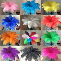 10x Large Ostrich Feathers Costume Birthday Wedding Party 20-30cm Decoration Set