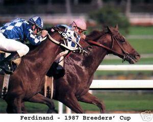 Ferdinand  - 1987 Breeders' Cup,  8x10 Color Photo