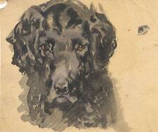 Künstlerische Aquarell-Malereien mit Hund-Motiv