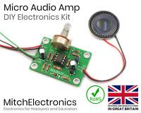 Micro Audio Amp - Electronic / Electronics DIY Kit