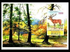 BELARUS. Cervus elaphus. 1995. Scott 134. MNH  (BI#12)
