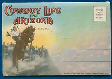 Cowboy Life in Arizona az horses range cattle broncho postcard folder