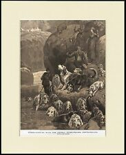OTTERHOUND KENDAL DOG PACK HUNTING GREAT DOG PRINT MOUNTED READY TO FRAME