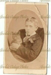 OLD CDV PHOTOGRAPH BOY WITH PET CAT J. BELL STUDIO FROME SOMERSET VINTAGE 1882