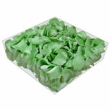 Echte konservierte Rosenblätter - Streukörbchen Hochzeit Tischdeko - grün