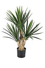 Künstliche Yucca Palme KEYLA, DELUXE, 70cm - Kunst Pflanze / deko Palme