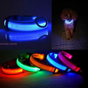 Adjuatable Flashing LED Dog Cat Pet Luminous Collar Night Safety Bright Necklace