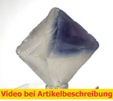 6534 polychromer Fluoritspaltoktaeder ca2,7cm Fluorite Octahedron diamond MOVIE