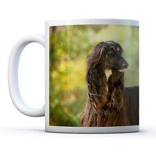 Beautiful Afghan Hounds - Drinks Mug Cup Kitchen Birthday Office Fun Gift #16056