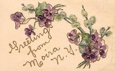 Moira New York~Purple Flowers~Violets & Pussy Willows~1908 Embossed Postcard