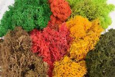 Articoli di paesaggio e natura multicolore per modellismo ferroviario scala 00