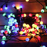 200 Multi Coloured Berry Christmas Fairy LED Lights Mains Indoor/Outdoor Xmas