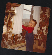 Old Vintage Photograph Adorable Little Boy By Window - Crazy Wild Wallpaper