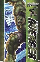 AVENGERS ~ HULK 22x34 MOVIE POSTER Marvel Incredible Mark Ruffalo The