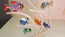 Swarovski Crystal Coral Reef Paradise Exotic South Seas Rare Retired 6 Pc Set!