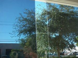 SAFETY SECURITY WINDOW TINT FILM RESIDENTIAL COMMERCIAL  4 MIL & SR BLOCK UV RAY