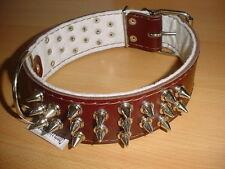 Hundehalsband mit Stachel-Nieten, Leder, 650/50mm braun