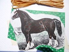 Handmade Brown Horse Blank Greeting Card