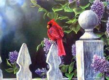 "Jim Hansel ""Birds Eye View"" Cardinal   Print  16"" x 12"""