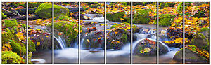Stream in Autumn Forest Picture on Canvas Framed and Ready to Hang Office Decor