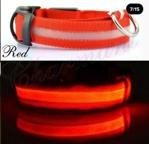 Nylon LED Pet Dog Collar Night Safety Flashing Glow In The Dark Dog Leash