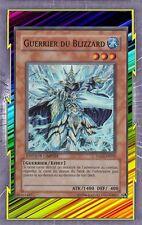 Guerrier du Blizzard HA01-FR002 Eau Guerrier Effet Niveau 3 YGO