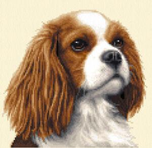 CAVALIER KING CHARLES SPANIEL dog Full counted cross stitch kit *Jann Designs