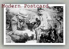 Red Cross Dog (World War I ? Austria ?)