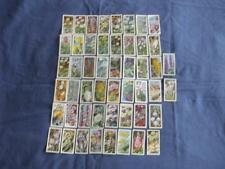 Flowers/Garden Brooke Bond/ PG Tips Collectable Tea Cards