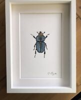 Blue/ Green Stag Beetle Original Signed Watercolour Painting, Gift
